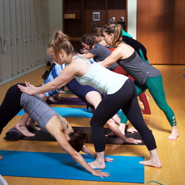 yoga teacher training downward dog position